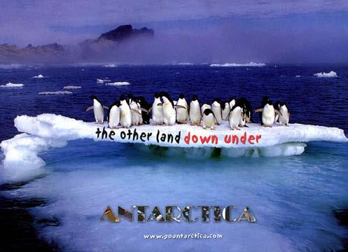 antarctica lberezin