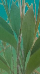 bamboo many FLAToil2