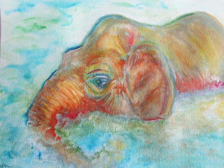Elephant Watercolor LB